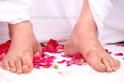 Gurudev Siyag's Lotus Feet Image 01
